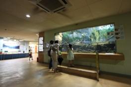 井の頭自然文化園 水生物館